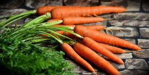 Foods that help you stay erect - Keep your erection!